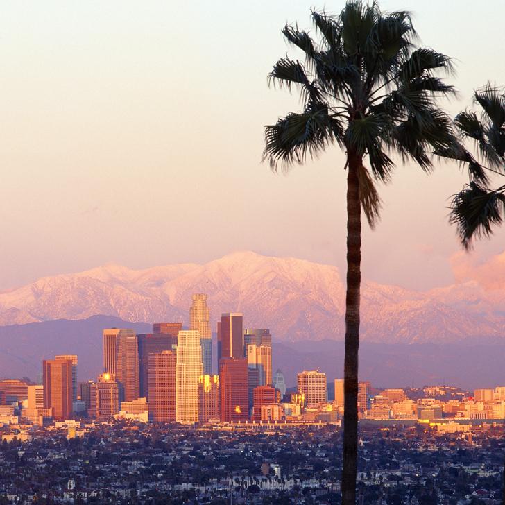 Kalifornische Wurzeln